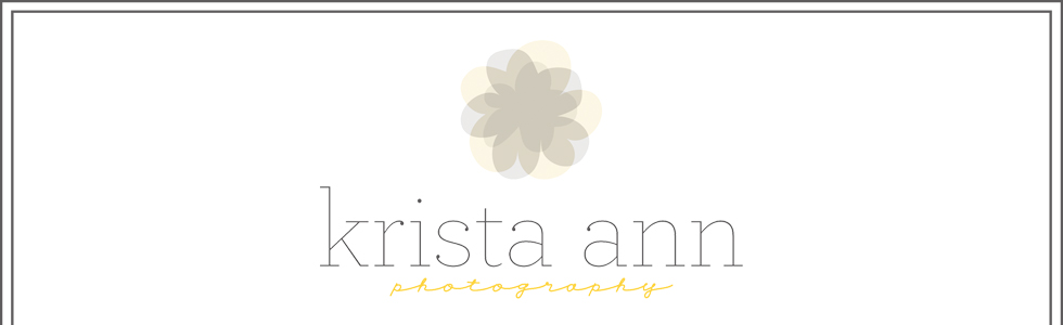 Plainfield IL Newborn Photographer | Krista Ann Photography logo